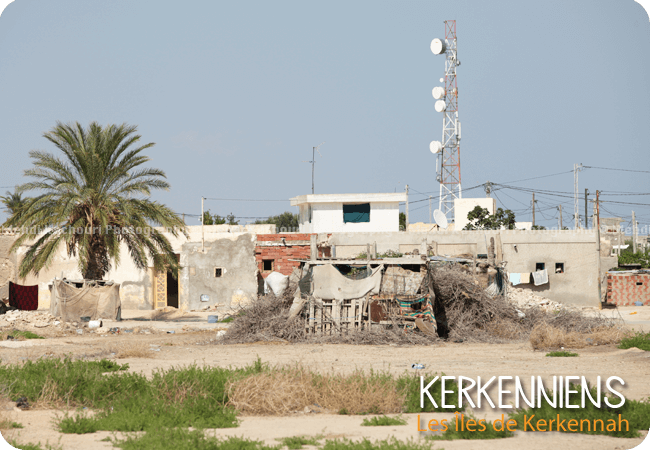 Un des 13 villages de kerkennah : Mellita - Photo 1