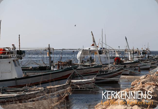 Un des 13 villages de kerkennah : Mellita Photo 9