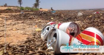 Empreintes désolantes dans la baie sauvage de Sidi Fonkhal, lieu de migration et de biodiversité, Canettes bière Celtia SFBT et dechets plastiques.