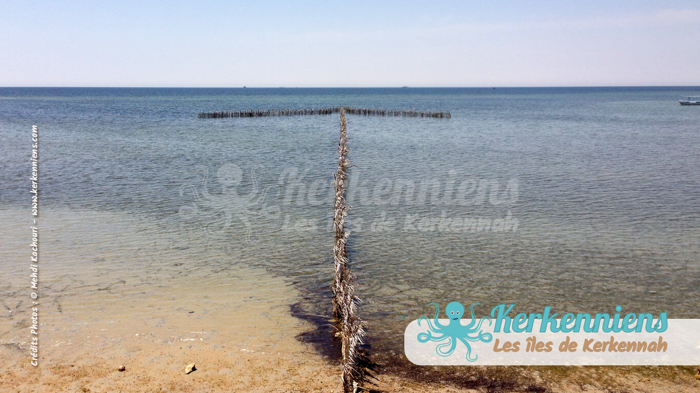 Charfia, dessin aux formes géométriques en mer - Charfia de Kerkennah (Tunisie)