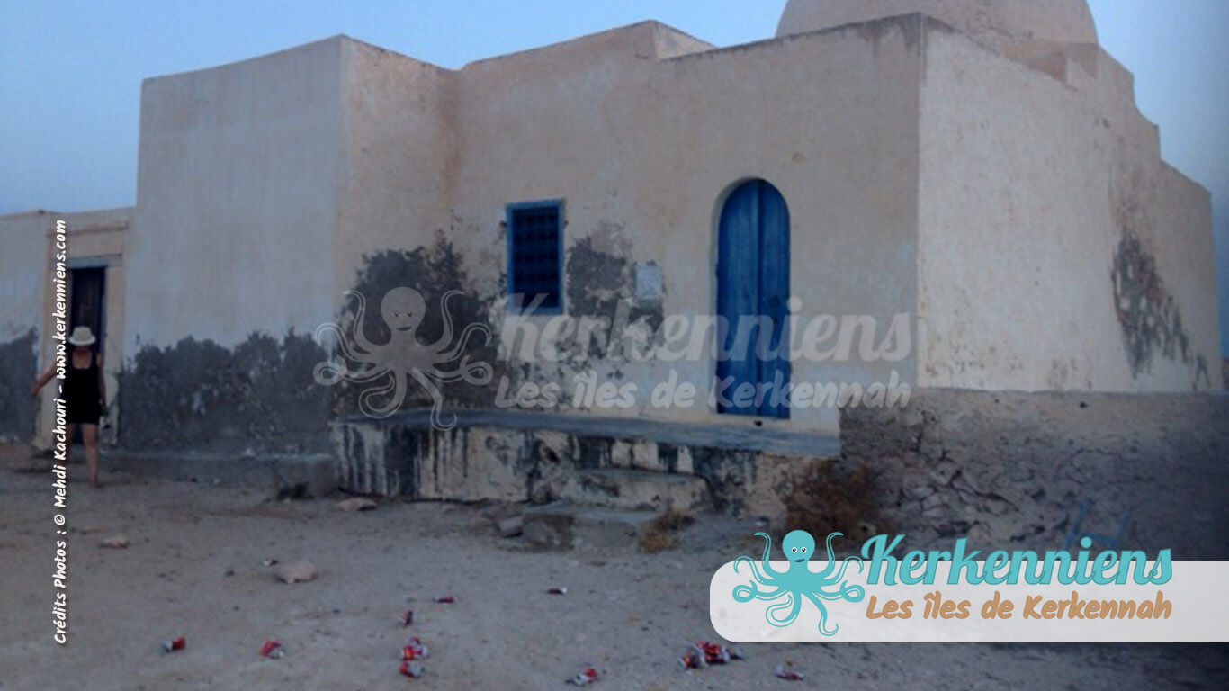Jardin de canettes (Celtia) autour du marabout sacré de Sidi Bou Ali - Kerkennah (Tunisie)