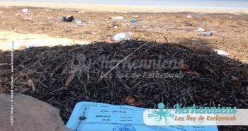 Réservation SONOTRAK de voiture pour le babour et succession de plastiques à l'horizon - Kerkennah (Tunisie)