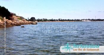 Sidi Fredj, randonnée aquatique et vue sur la palmeraie Kerkennah (Tunisie)
