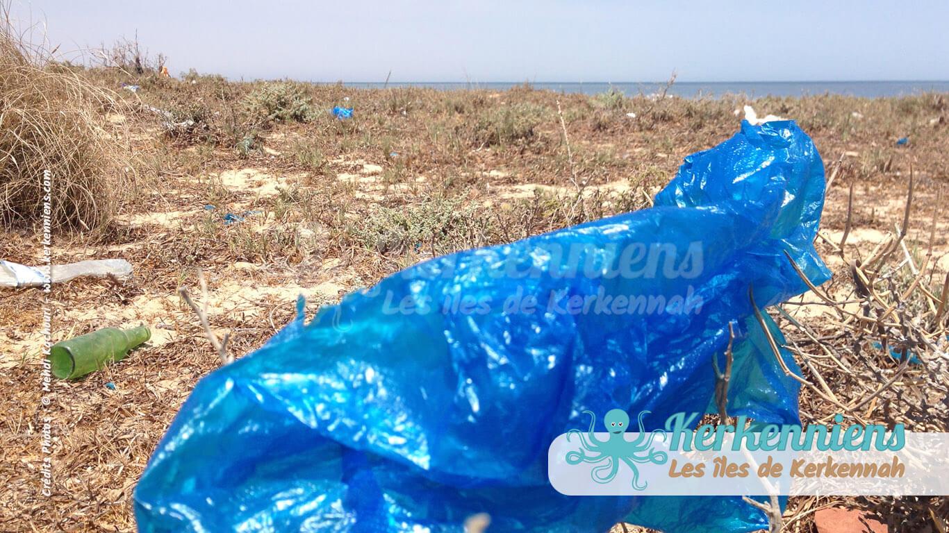 Le très célèbre sac plastique bleu de Kerkennah... on préfère le bleu du ciel dans la mer Kerkennah (Tunisie)