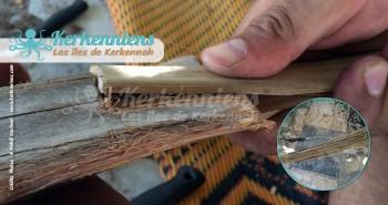 Construire une flouka Bourdou (melwuina et Dman) sculpté et fixé
