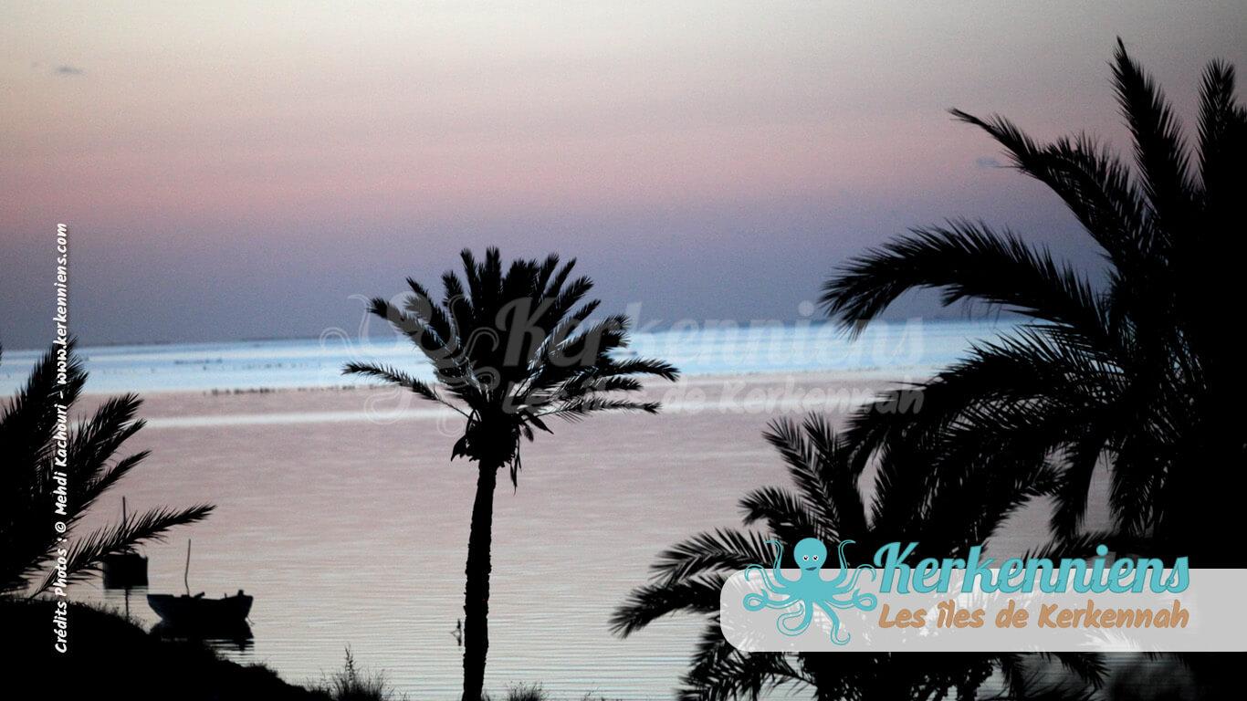 Lever de soleil Kerkennah (Ouled Yaneg / Ouled Kacem)