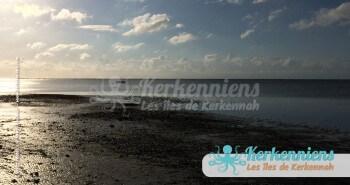 Miracle de la marée basse en méditerranée Kerkennah