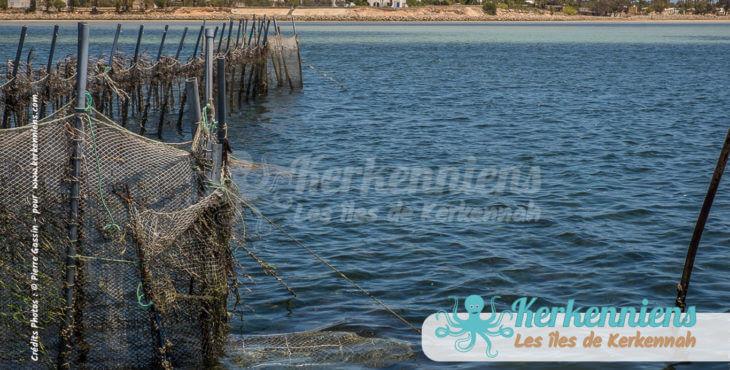 Charfia, le bonheur est dans la mer