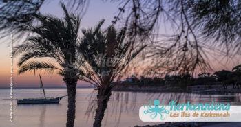 Coucher de soleil palmiers Kerkennah juin 2016 - Pierre Gassin