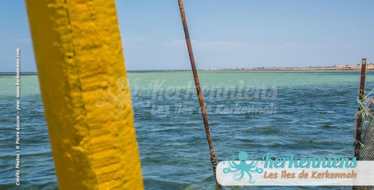 Vert printanier, ma couleur préférée dans le bleu de la mer Méditerranée…