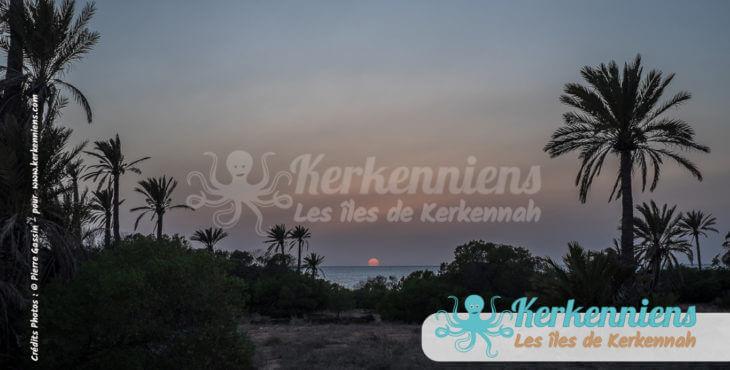 Kerkennah dans l'objectif de Pierre Gassin et de ses parents