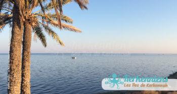 Horizon de méditerranée à Kerkennah, palmiers et flouka