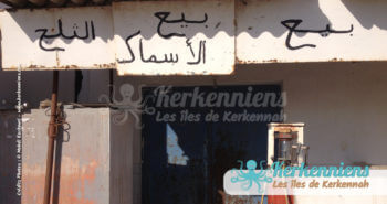 Vente de glace et de poisson l'authentique Kerkennah (Décembre 2012)