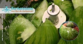 Tomate verte coupée et mixée avec la coriandre et les piments Recette de cuisine