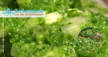Recette Beurre de piment aux feuilles de coriandre fraiche recette de cuisine