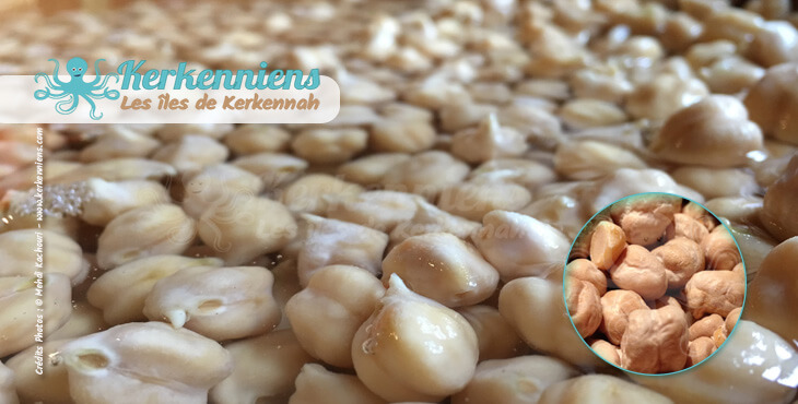 Recette de cuisine : Mermez Tunisien à la viande (hams, 7oms, homss) à base de pois chiches