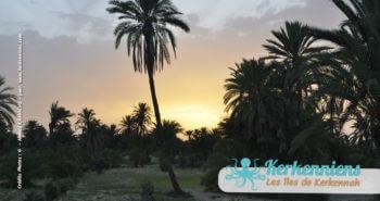 Kerkennah, un patrimoine culturel et émotionnel en héritagepar Imèn et Ahmed Kaaniche