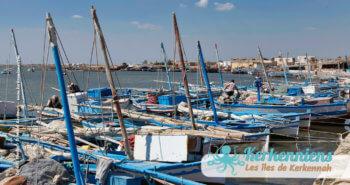 Diversité des embarcations Kerkenniennes Loud, Flouka, Kanota