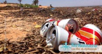 Consommation d'alcool et pollution du littoral, canette de bière Celtia - Kerkennah Tunisie