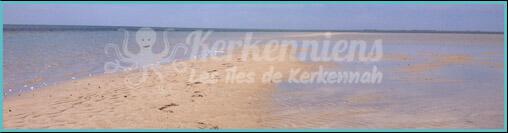 Détente à la plage Kerkennah Tunisie