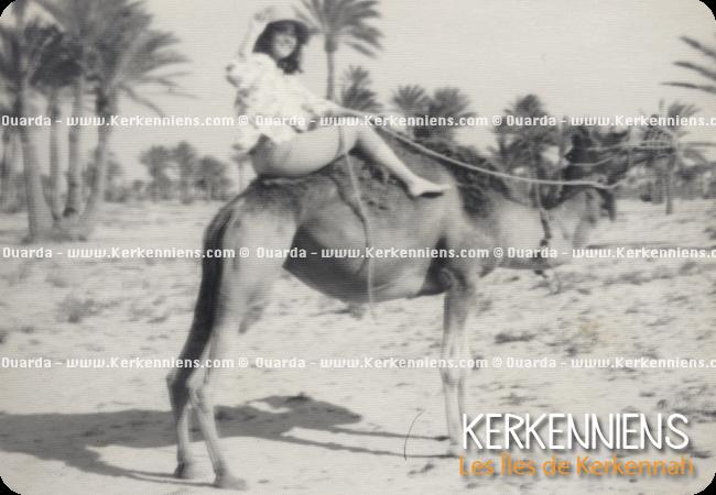 Balade a dos de dromadaire à Kerkena Kerkennah Tunisie