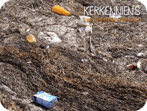 Kerkennah: poubelle ou paradis? photo Kerkennah 1 - kerkenniens le blog