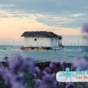 Liberta Cercina (Sayyed Amiri) Maison