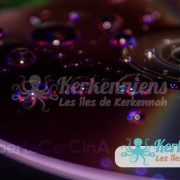 Liberta Cercina (Sayyed Amiri) Rain DVD
