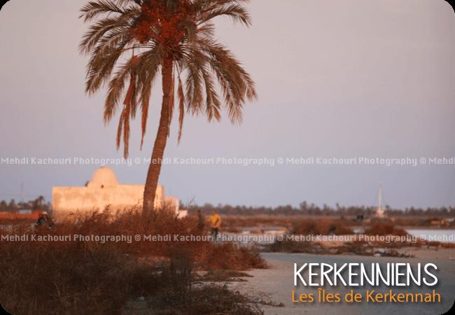 Les marabouts Sidi Saïd – Ouled Bou Ali (Tunisie Kerkennah)