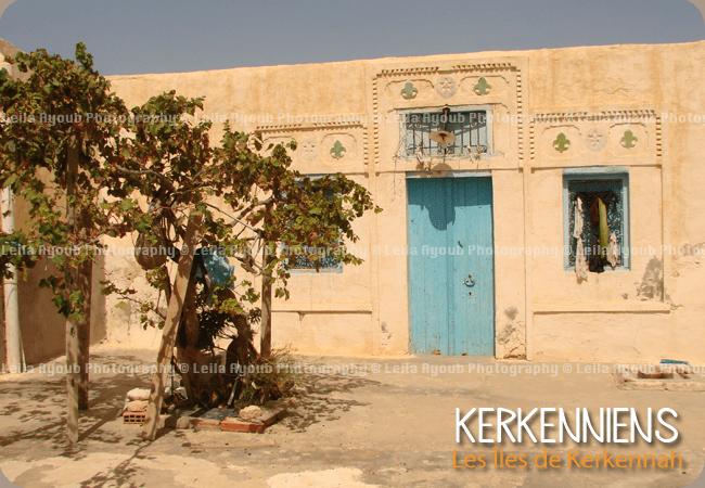 Vigne interieur patios Kerkennah – Photo de Leila Ayoub Kerkennienne