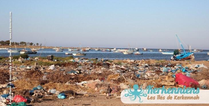 Nettoyage: Que font les Karknia et les Karkni?