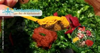 Ajouter les condiments farce des calmars (bel Mattik)