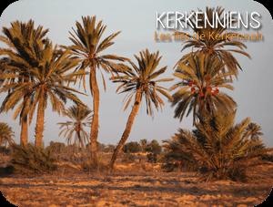 À l'approche des fêtes de fin d'année, une escapade à Kerkennah ?