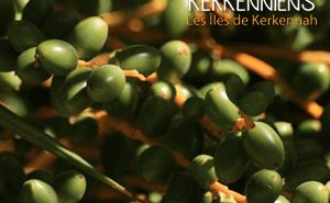 L'archipel des îles de Kerkennah image-2 kerkenniens Le blog