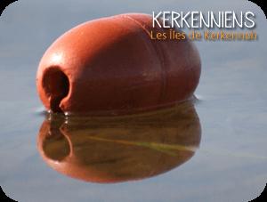 Avis & conseils : îles de Kerkennah kerkenniens le blog