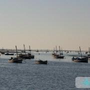 Le port de El Attaya Felouques