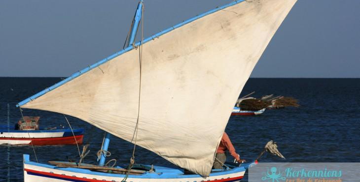 El Attaya Barques Felouques