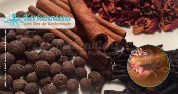 Chermoula sfaxienne charmoula graine de cubèbe moulu (Kabbaba), boutons de roses séchés (Chouch warid ou Chouch il ward), clou de girofle (Aoud quronfol) et la cannelle (Quirfa)