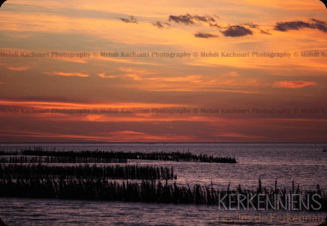 Coucher de soleil Iles de Kerkennah Kerkena Tunisie Photo 10
