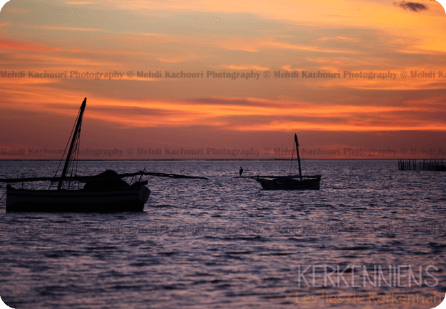 Coucher de soleil Iles de Kerkennah Kerkena Tunisie Photo 12