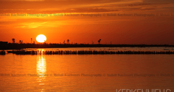 Coucher de soleil Iles de Kerkennah Kerkena Tunisie Photo 7