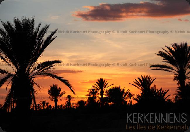 Coucher de soleil Iles de Kerkennah Kerkena Tunisie Photo 8