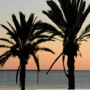 Photo de coucher de soleil