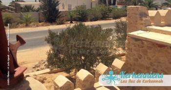 Dar Manaret Karkna maison d'hôtes à Kerkennah photo 24
