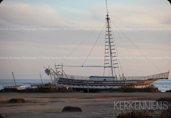 Découvrez l'Archipel de Kerkennah photo 2