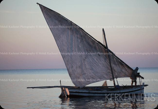 Découvrez l'Archipel de Kerkennah photo 3