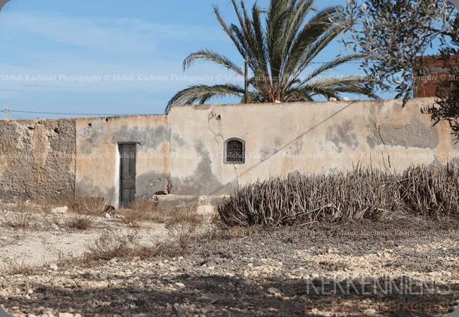 Découvrez l'Archipel de Kerkennah photo 7