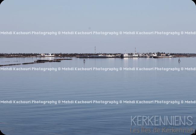 Départ pour Kerkennah : Traversée Sfax - îles de Kerkennah photo 4