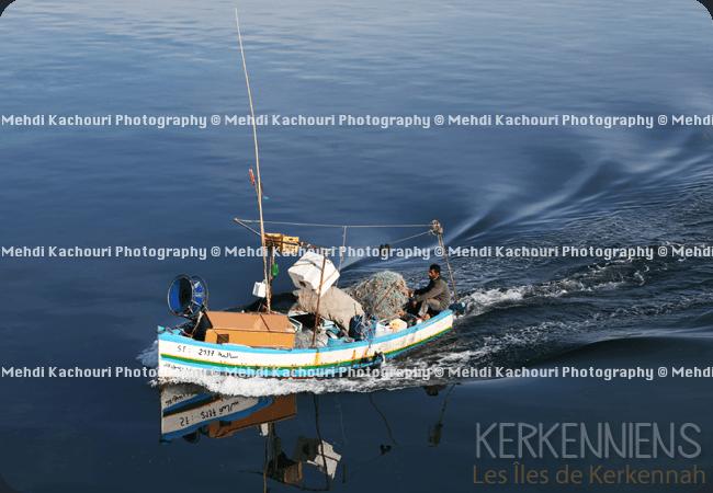 Départ pour Kerkennah : Traversée Sfax - îles de Kerkennah photo 6