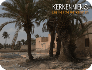Excursions en Tunisie : vos Vacances à Kerkennah